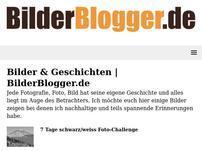 BilderBlogger