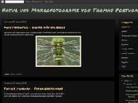 Natur und Makrofotografie von Thomas Portugall