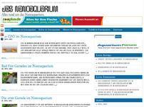 Das Nanoaquarium