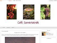 Café Sonnenblende