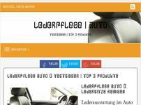 Lederpflege Auto