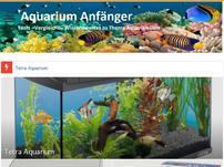 Aquarium Anfänger