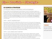 Ex-Zurück-Strategie